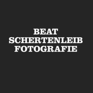 Bildschirmfoto 2021 02 11 um 11 29 07 Webdesign Bern Schweiz
