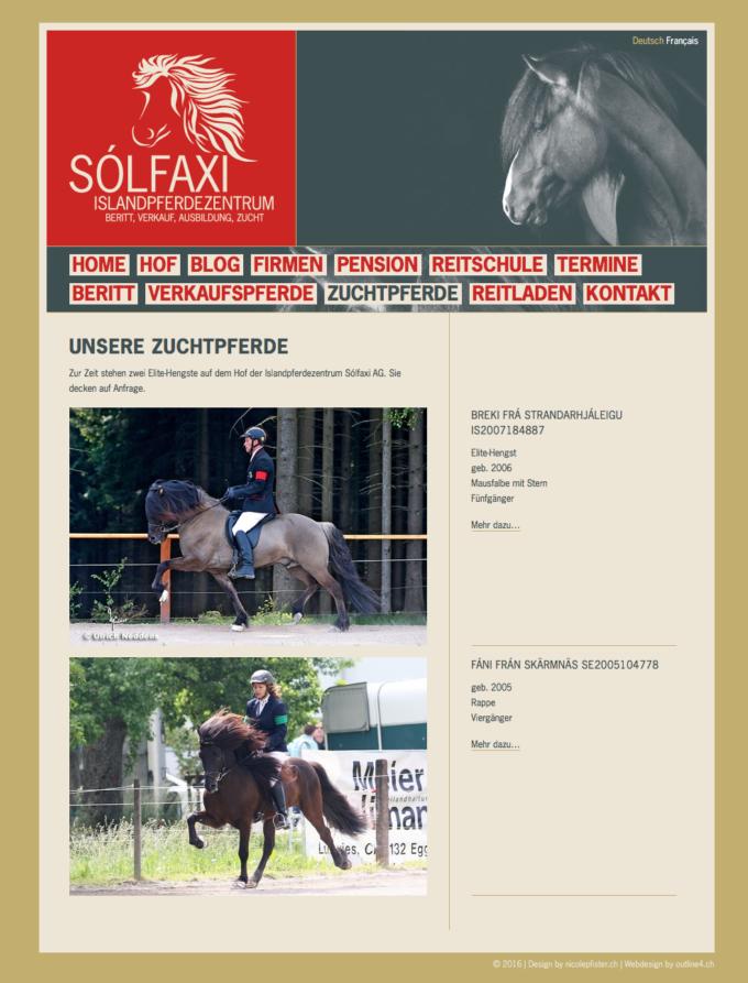 Solfaxi Webdesign 5 Webdesign Bern Schweiz